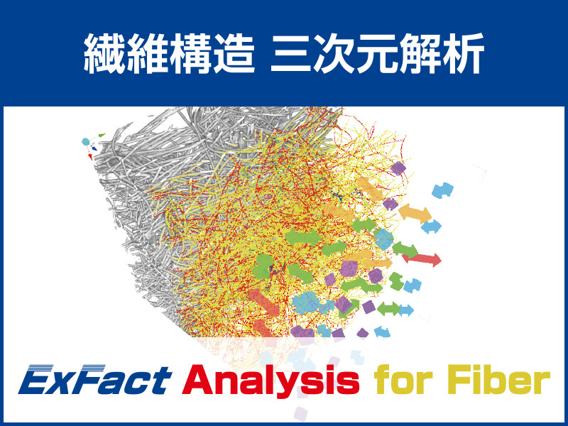 ExFact Analysis for Fiber