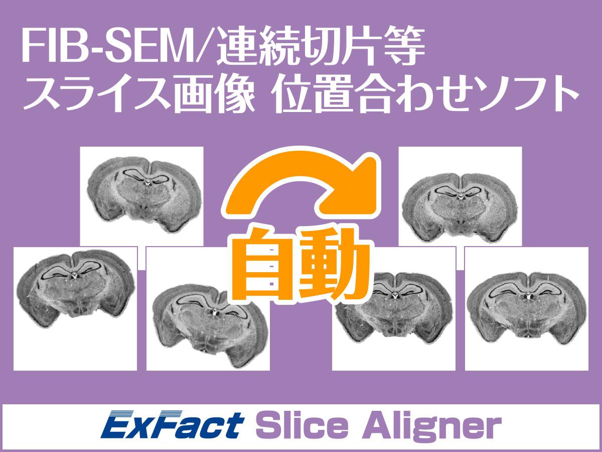 スライス画像(連続切片/医用画像/FIB-SEM/SBF-SEM)位置合わせソフト