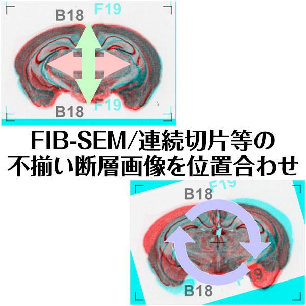 前後の画像を半透明表示後に移動/回転