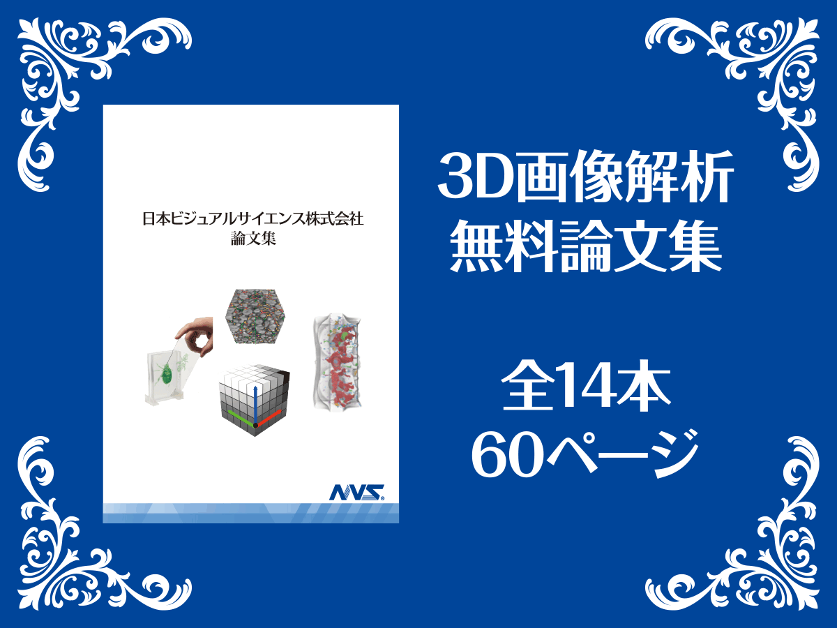 3D画像解析 無料論文集 全14本 60ページ
