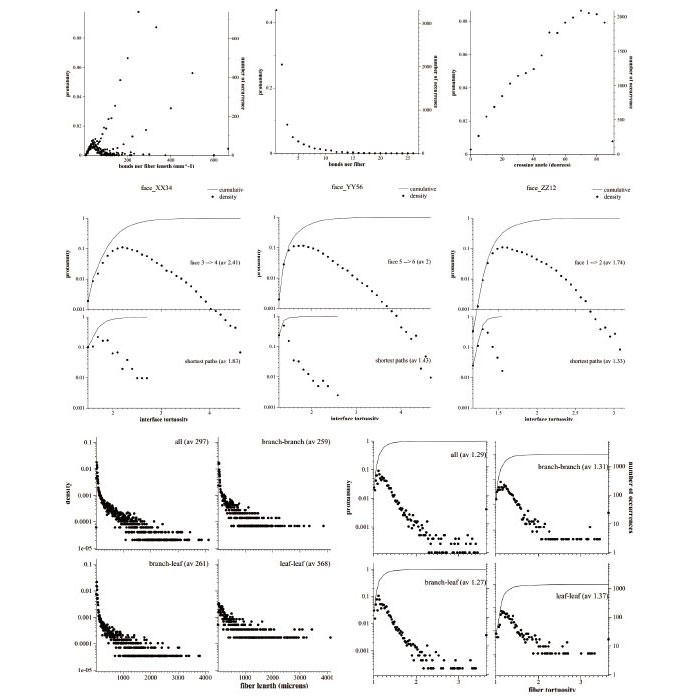 繊維構造(繊維解析数値)